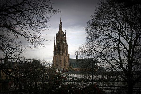 Wenn der Herbst die Stadt ergreift / Frankfurt am Main - © Helga Jaramillo Arenas - Fotografie und Poesie / August 2013
