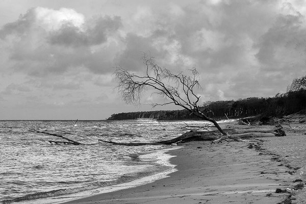 Wasser und Land (1) - © Helga Jaramillo Arenas - Fotografie und Poesie / Januar 2019
