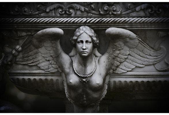 Unergründliches Angesicht - © Helga Jaramillo Arenas - Fotografie und Poesie / November 2011