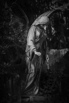 Nehmen dürfen - © Helga Jaramillo Arenas - Fotografie und Poesie / Dezember 2017