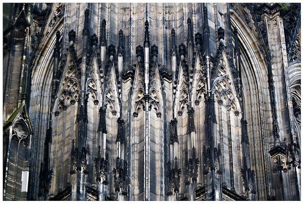 Strebsam - © Helga Jaramillo Arenas - Fotografie und Poesie / Oktober 2012