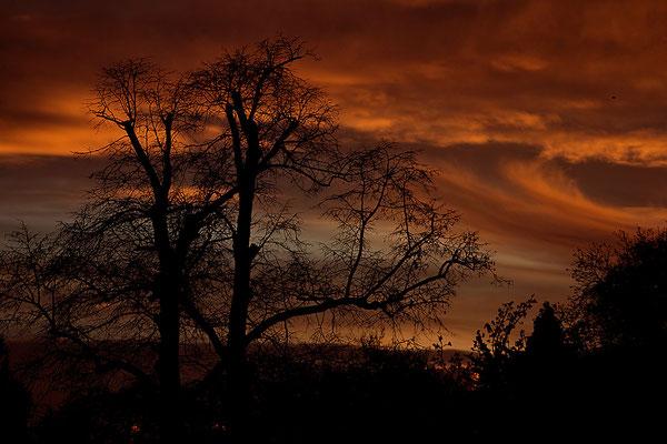 Wenn der Himmel Feuer fängt - © Helga Jaramillo Arenas - Fotografie und Poesie / November 2015