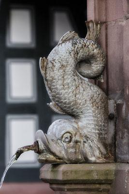 Am Fischbrunnen (2) / Höchst im Odenwald - © Helga Jaramillo Arenas - Fotografie und Poesie / August 2018