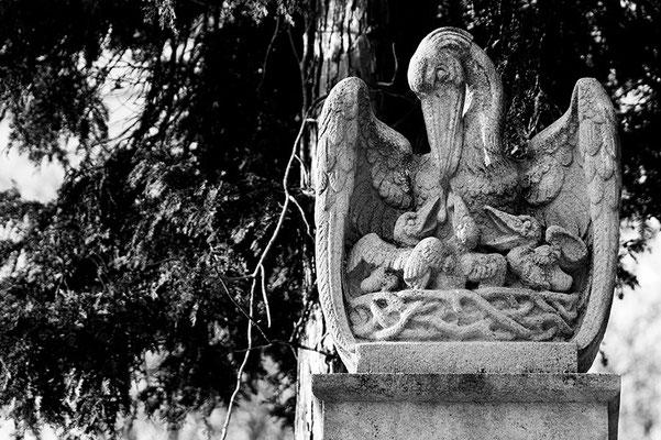 Aufopferung - © Helga Jaramillo Arenas - Fotografie und Poesie / Januar 2011