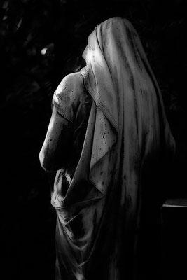 Vom Licht geträumt - © Helga Jaramillo Arenas - Fotografie und Poesie / Oktober 2017