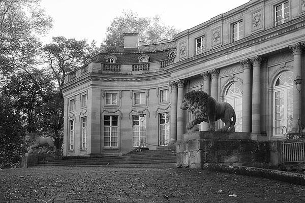 Die Bewacher - Schloß Monrepos / Ludwigsburg - © Helga Jaramillo Arenas - Fotografie und Poesie / Dezember 2016