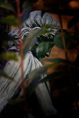 Verborgen - © Helga Jaramillo Arenas - Fotografie und Poesie / Januar 2015