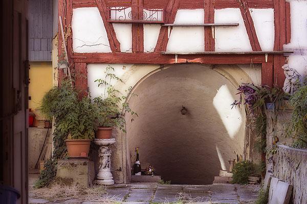Der Weg zum Keller - © Helga Jaramillo Arenas - Fotografie und Poesie / November 2019