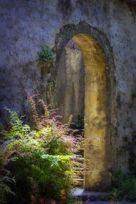 Weg voller Geheimnis - © Helga Jaramillo Arenas - Fotografie und Poesie / Juli 2018