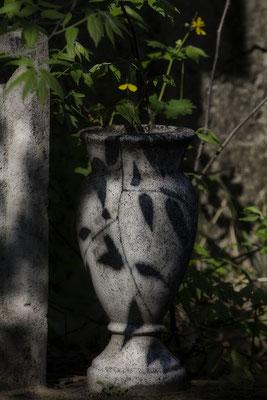 Die Schatten finden - © Helga Jaramillo Arenas - Fotografie und Poesie / Mai 2017