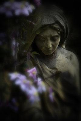 Trostreiche Blüten - © Helga Jaramillo Arenas - Fotografie und Poesie / Mai 2014