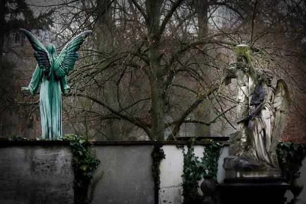 Die Geduld der Engel - © Helga Jaramillo Arenas - Fotografie und Poesie / Januar 2013