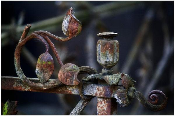 Das Entschwinden der Zeit - © Helga Jaramillo Arenas - Fotografie und Poesie  / Oktober 2012