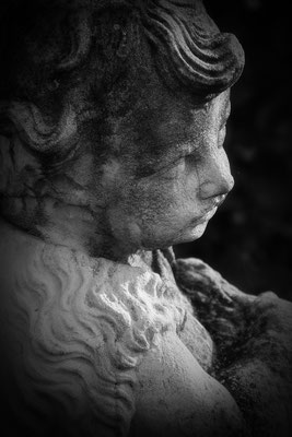 Die Treue (2) - © Helga Jaramillo Arenas - Fotografie und Poesie / Oktober 2017