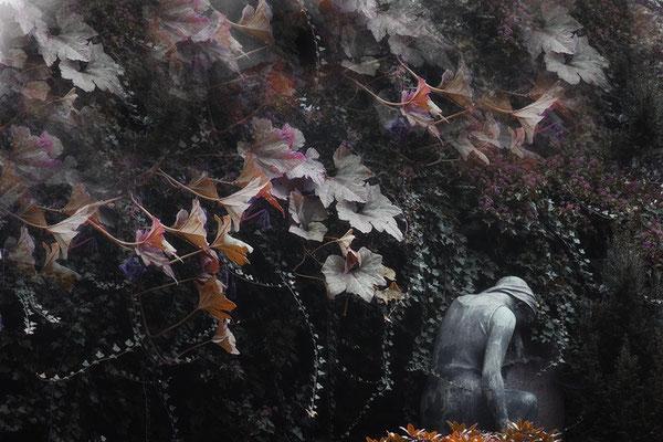 Erdumschlungen - © Helga Jaramillo Arenas - Fotografie und Poesie / Januar 2015