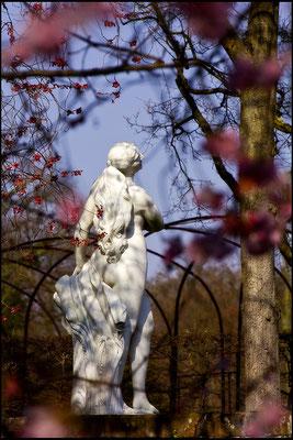 Tanz mit dem ersten Frühlingslicht - © Helga Jaramillo Arenas - Fotografie und Poesie / März 2015