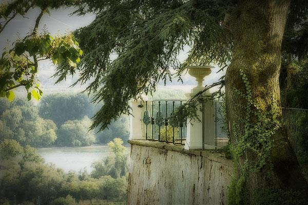 Es war einmal... - Schloß Johannisberg / Rheingau- © Helga Jaramillo Arenas - Fotografie und Poesie / September 2020