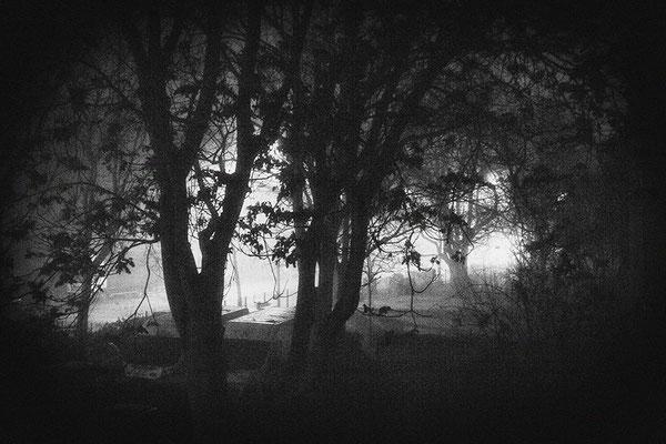 Endzeit -  © Helga Jaramillo Arenas - Fotografie und Poesie / April 2021