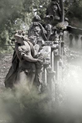 Auf geheimnisvollen Wegen - © Helga Jaramillo Arenas - Fotografie und Poesie  / August 2015