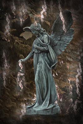 Das Licht der Engel - © Helga Jaramillo Arenas - Fotografie und Poesie / Dezember 2014