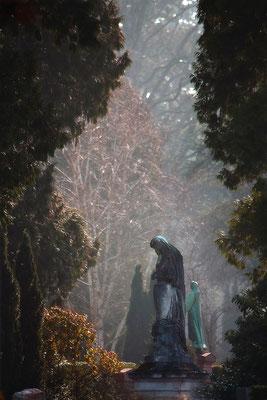 Die stillen Wächter - © Helga Jaramillo Arenas - Fotografie und Poesie / Februar 2015