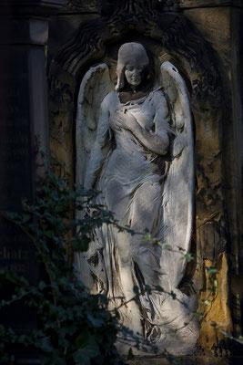 Zwischen Licht und Schatten - © Helga Jaramillo Arenas - Fotografie und Poesie / Januar 2015