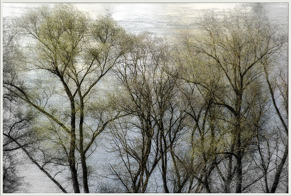 Eröffnung des Frühlings - © Helga Jaramillo Arenas - Fotografie und Poesie / April 2017