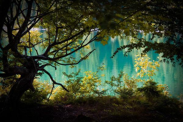 Am See - © Helga Jaramillo Arenas - Fotografie und Poesie / März 2015