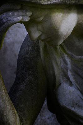 Bittere Erkenntnis (1) - © Helga Jaramillo Arenas - Fotografie und Poesie / Februar 2019
