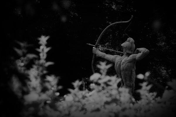Der Bogenschütze - © Helga Jaramillo Arenas - Fotografie und Poesie  / Juli 2013
