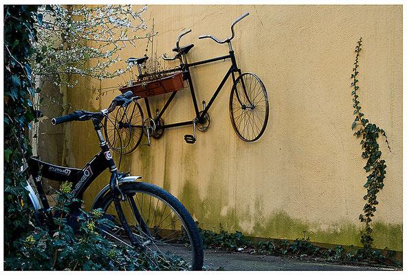 Ra(d)schlag - © Helga Jaramillo Arenas - Fotografie und Poesie / April 2012