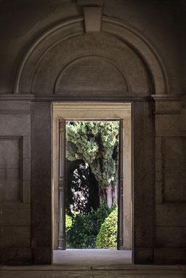 Suche - © Helga Jaramillo Arenas - Fotografie und Poesie / Mai 2018