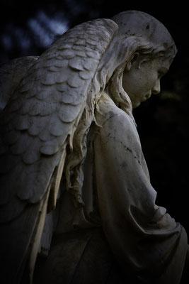 Mal´ mir einen Engel - © Helga Jaramillo Arenas - Fotografie und Poesie / Mai 2014