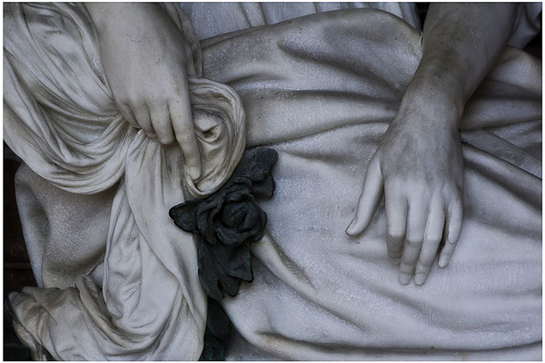 Die schwarze Rose - © Helga Jaramillo Arenas - Fotografie und Poesie / August 2012