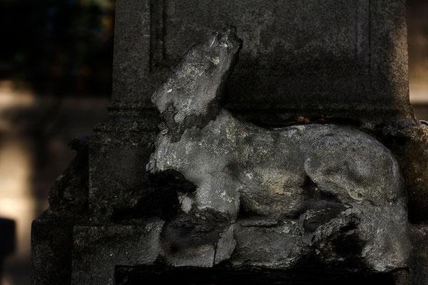 Das Entschwinden - © Helga Jaramillo Arenas - Fotografie und Poesie / Oktober 2015