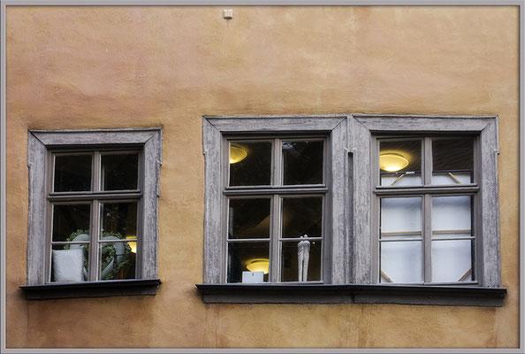 Die stillen Zuschauer - © Helga Jaramillo Arenas - Fotografie und Poesie / August 2019