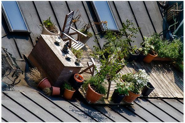 Geschichten vom Dach (3) - © Helga Jaramillo Arenas - Fotografie und Poesie / September 2012