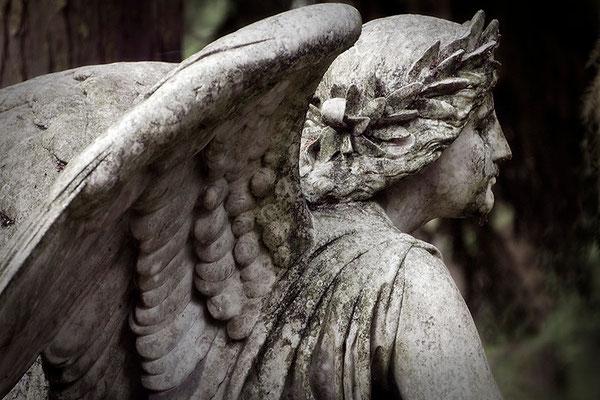 Engel der Liebe (2) - © Helga Jaramillo Arenas - Fotografie und Poesie  / August 2015