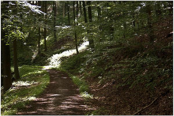 Lichtwege (2) - © Helga Jaramillo Arenas - Fotografie und Poesie / Juli 2012