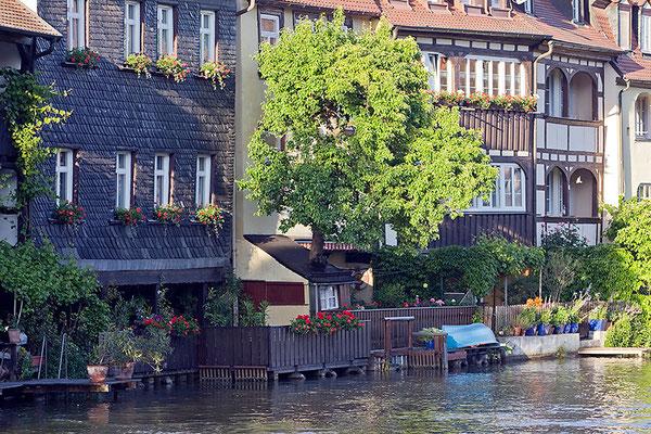 Wenn die Bäume aus den Häusern wachsen / Bamberg - © Helga Jaramillo Arenas - Fotografie und Poesie / Juni 2015