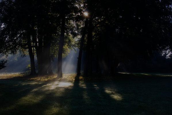 Das Glück des beginnenden Tages - © Helga Jaramillo Arenas - Fotografie und Poesie / Oktober 2011