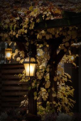 Wärmendes Licht - © Helga Jaramillo Arenas - Fotografie und Poesie / November 2017