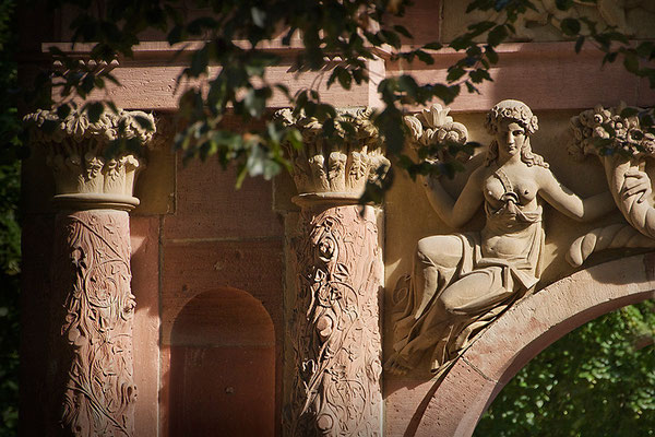 Füllhorn des Sommers / Heidelberg - © Helga Jaramillo Arenas - Fotografie und Poesie / August 2015