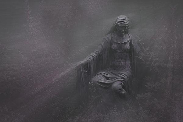 Geschichten aus den Nebelwäldern - © Helga Jaramillo Arenas - Fotografie und Poesie / Januar 2015