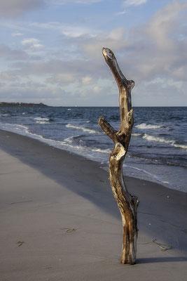 DerPrediger am Meer - © Helga Jaramillo Arenas - Fotografie und Poesie / Januar 2019