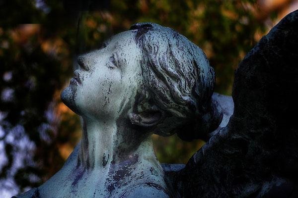 Der berechtigte Einwand (2) - © Helga Jaramillo Arenas - Fotografie und Poesie / Mai 2019