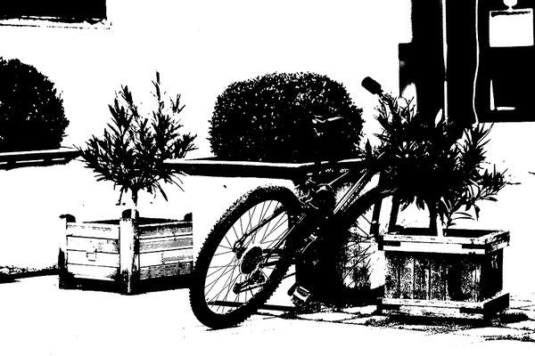 Gutes Rad ist teuer I. - © Helga Jaramillo Arenas - Fotografie und Poesie / Februar 2018