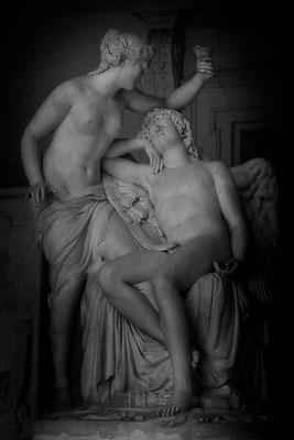 Ergeben in den Anblick der göttlichen Schönheit - © Helga Jaramillo Arenas - Fotografie und Poesie / November 2015