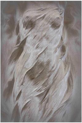 Gefangen in zärtlichen Winden - © Helga Jaramillo Arenas - Fotografie und Poesie  / April 2014