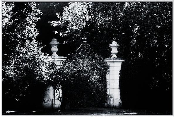 Der Geheime Garten / Schloßgarten Schwetzingen - © Helga Jaramillo Arenas - Fotografie und Poesie / Februar 2017